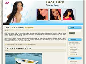 Choisissez votre thème WordPress !!